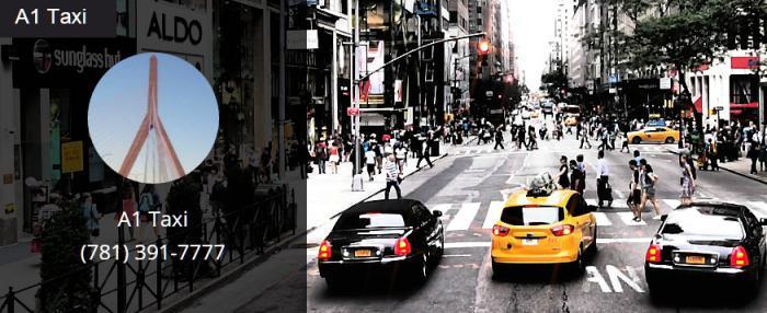 A1 Taxi llc
