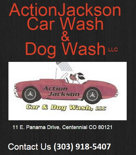 Action Jackson Car & Dog Wash