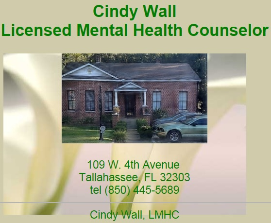 Cindy Wall Licensed Mental Health Counselor LLC