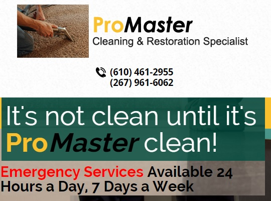 ProMaster Cleaning & Restoration Specialist