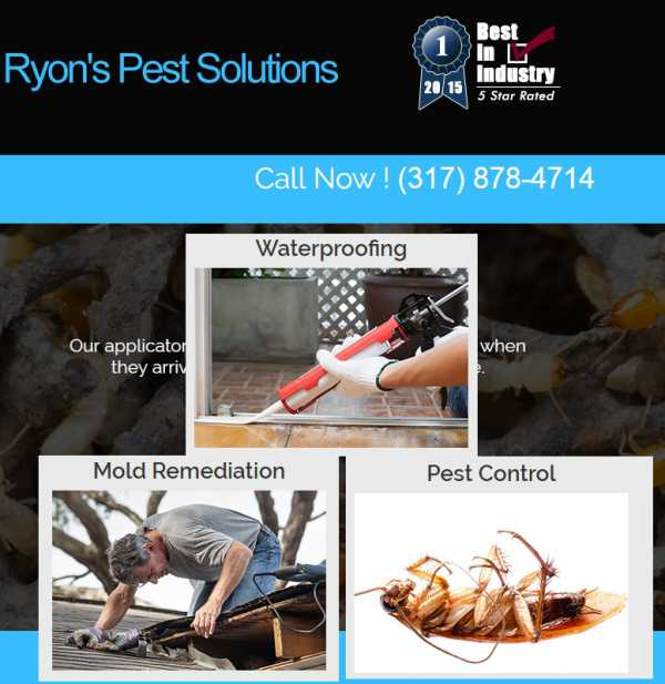 Ryon's Pest solutions